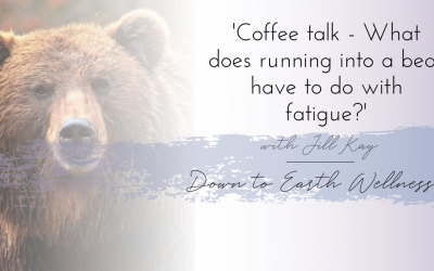 What does running into a bear have to do with fatigue?
